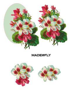 3d fleurs - Page 15
