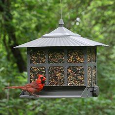 Affordable Squirrel Proof Bird Feeder! Http://squirrel Proofbirdfeeder.com/