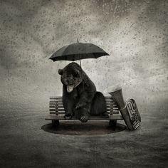 Фото Медведь сидит на скамейке под зонтом, рядом музыкальный инструмент, все в каплях дождя