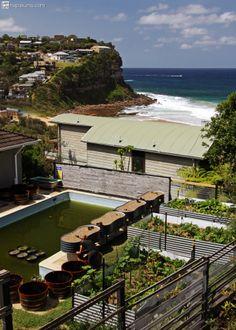permaculture experience at Bungan Edible Sanctuary #hapakuna #workawayAustralia #helpxDownUnder #permacultureAustralia #BunganEdibleSanctuary