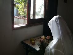 Traditional Carmelite hermit: Day by Day in the Desert Monastery and Carmelita