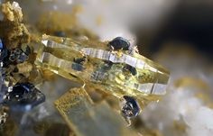 Synchisite-(Ce), CaCe(CO3)2F, with hematite and rutile, Pfitscherjoch, South Tyrol, Italy. Fov 1.5 mm. Collection/Copyright: Kainosit