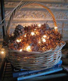 pinecones <3