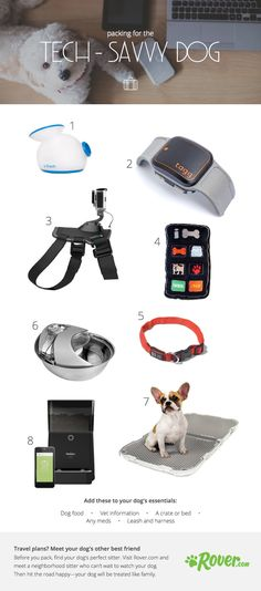 Is your tech-savvy dog heading on vacation? Get the packing list that will give them all of the comforts of home--at their finger tips!