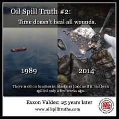 25 years after the Exxon Valdez oil spill, scientists have found oil on beaches in Alaska that is just as toxic as if it had been spilled only a few weeks ago. Visit http://oilspilltruths.com/ to learn 10 truths about the oil spills.