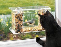 mangeoire pour oiseaux de fenêtres