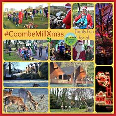CoombeMillXmas Highlights from the farm over the Christmas Holidays