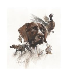 German Shorthaired Pointer Signed Print by Valery Siurha, deutsch kurzhaar art, shorthair pointer ar kuurzhaar Your place to buy and sell all things handmade Gsp Puppies, Pointer Puppies, Pointer Dog, Hunting Art, Hunting Gifts, Hunting Dogs, Weimaraner, Pheasant Hunting, German Shorthaired Pointer