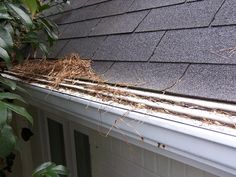 The idea that there would be some type of gutter protection device that could reduce or eliminate the need to clean out your gutters would be an appealing thought. Is it worth it ?