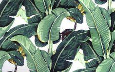 Le nuove carte da parati: giungle urbane a tutta parete | LEGGI L'ARTICOLO SU WITCASA --> http://witcasa.webmobili.it/le-nuove-tappezzerie-giungle-urbane-a-tutta-parete-19161/