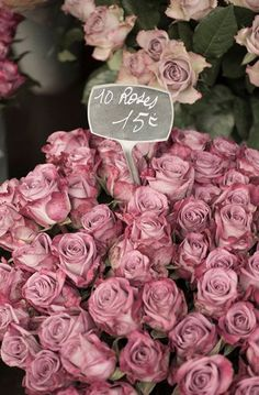 Paris Roses Photograph