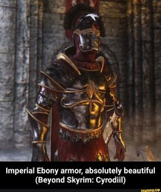 Imperial Ebony armor, absolutely beautiful (Beyond Skyrim: Cyrodiil) - Imperial Ebony armor, absolutely beautiful (Beyond Skyrim: Cyrodiil) - iFunny :) Skyrim Armor, Tes Skyrim, Skyrim Mods, Fantasy Concept Art, Fantasy Armor, Fantasy Character Design, Medieval Fantasy, Imperial Skyrim, Imperial Legion