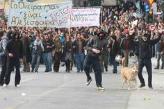 Athens Riot Dog Sausage.  One committed protester was at the front line when Greek police fired teargas at protesters outside parliament on Wednesday.    The dog, thought to be a stray called Loukanikos, or Sausage, has been in the centre of the action for years and turns up at every protest.