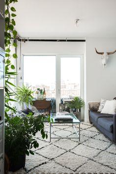 Sohva, matto + viherkasvit
