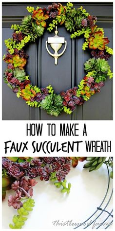 how-to-make-a-succul