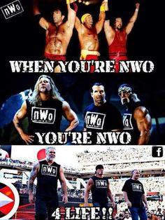 Nwo Wrestling, Wrestling Posters, Wrestling Superstars, Wrestling Divas, Wwe Hulk Hogan, Wrestlemania 29, Kevin Nash, Wwe Tna, Wwe Wallpapers