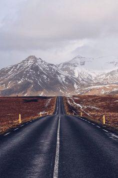 ICELAND Bruin Alexander's Story on Steller