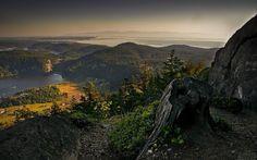 Tapete mit einem mythischen heiligen sichere Häfen mit Berg-und Waldblick