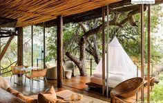 Salon, SAM, Terrasse Indoor/Outdoor dans les arbres