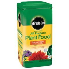 Miracle Gro All Purpose Plant Food 10 Sq. Miracle-Gro water soluble all purpose plant food instantly feeds vegetables, trees, shrubs and houseplants to grow bigger and more beautiful than unfed plants. Home Depot, Evergreen Shrubs, Trees And Shrubs, Indoor Plants, Indoor Outdoor, Indoor Succulents, Smooth Hydrangea, Pots, Cedar Raised Garden Beds