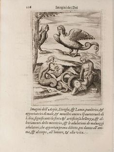Arpia, Strega & Lamia. - 'Images Depicting the Gods of the Ancients' by Vincenzo Cartari was first published in 1556.