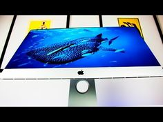 NEW iMac 5K (Late 2015) - Unboxing & First Impressions! - YouTube