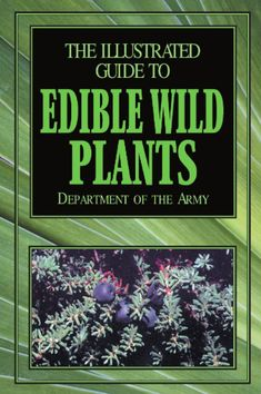 12-The-Illustrated-Guide-to-Edible-Wild-Plants