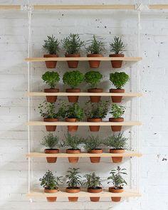 Cool window display idea for the potted plants? Shake My Blog | Un jardin suspendu DIY