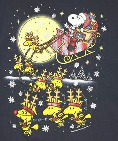Snoopy Claus :)