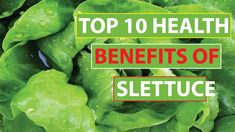 Top 10 Health Benefits Lettuce Help to Promote Weight Loss 10 News, Lettuce, Health Benefits, Weight Loss, Make It Yourself, Top, Losing Weight, Crop Shirt, Salads