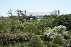 This Seaside Bohemian House on Long Island's East End Is a Must-See Photos Landscaping Around House, Luxury Landscaping, Backyard Landscaping, Garden Yard Ideas, Lush Garden, Garden Path, Hamptons House, The Hamptons, John Hill
