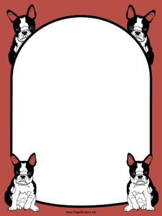 Four adorable black-and-white Boston terrier puppies decorate this free, printable, red dog border. Free to download and print.