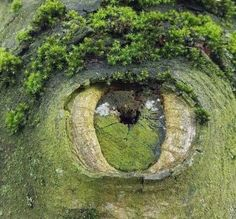 the land is ancient and nature watches over us closely as proved by the amazing piece of land art utilising and manipulating the natural enviroment here Beautiful World, Beautiful Places, Amazing Places, Beautiful Sites, Cool Pictures, Cool Photos, Amazing Photos, Nature Pictures, Pictures Of Trees