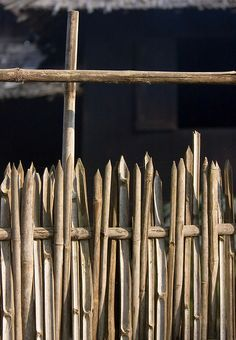 bamboo fencing, great for yard with many wild birds, the spikes would protect them but not stop them from using it. Garden Gates, Garden Art, Garden Design, Bamboo House, Bamboo Fence, Growing Bamboo, Bamboo Building, Bahay Kubo, Fence Screening