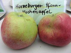 Horneburger Pfannkuchenapfel