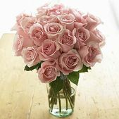 Long stemmed pink roses make the perfect gift when you want to show gratitude and appreciation. This splendid bouquet of velvety deep pink blossoms comes from the prophyta family of roses and is known for its medium sized heads with buds that open perfectly with abundant petals. Expect at least 7-14 days of beauty from these long lasting blooms. Includes two dozen long stemmed roses. Vase not included.