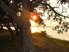 Florida, USA Gez Dünyayı,özüne dön!Aydınlan ve Aydınlat!!!
