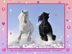 """Pferdeweisheit """"Sophie & Frédéric"""