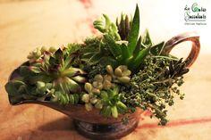 La saucière d'Argent - Version du jour - Composition de plantes grasses dans un contenant déniché en brocante. Déco vintage, romantique, décoration mariage. Succulents in a gravy boat.