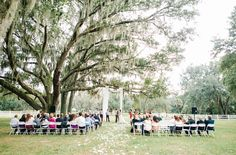 Fall wedding under a giant tree