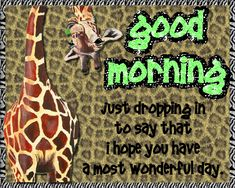 Send this quirky giraffe good morning card. Free online Just Dropping In ecards on Everyday Cards Morning Hugs, Good Morning Cards, Morning Memes, Good Morning Gif, Morning Wish, Good Morning Quotes, Healing Wish, Morning Board, Psalm 118
