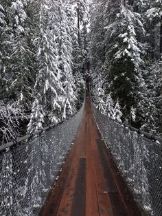 Places That Are Even Better During The Winter Capilano Suspension Bridge, Vancouver. ALREADY DONE! But I would love to go when it has snow!!!!