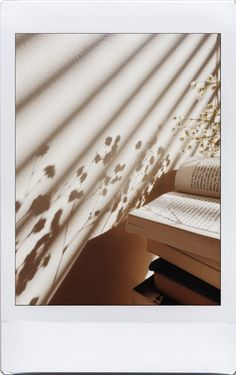 Flower shadow and book livre ombre fleurs Brown Aesthetic, Aesthetic Vintage, Aesthetic Photo, Aesthetic Pictures, Cream Aesthetic, Foto Art, Book Photography, Light And Shadow, Wall Collage