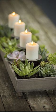 Succulents and candles in a wood container. So sweet! -Nicki