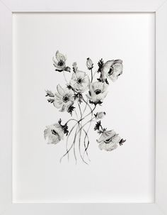Greyscale Poppies by Shannon Kirsten at minted.com