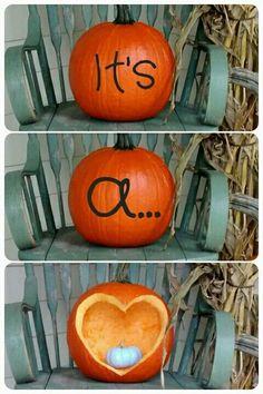fall pumpkin gender reveal