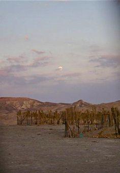 Moon over the desert in Israel