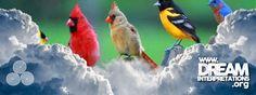 Birds - Dream Interpretation - Dream Dictionary - Dream Symbol