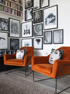 33 Amazing Grey White Black Living Room Decor Ideas And Remodel. If you are looking for Grey White Black Living Room Decor Ideas And Remodel, You come to the right place. Here are the Grey White Blac. Grey And Orange Living Room, Orange Couch, Orange Rooms, Living Room Grey, Living Room Chairs, Living Room Furniture, Orange Room Decor, Orange Walls, Orange Chairs