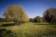 Fotos: Isaias Mena - Ajuntament de Tarragona Country Roads, Florida, Pictures, The Florida